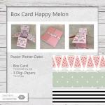 Box Card Happy Melon