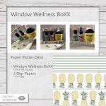 Window Wellness BoXX